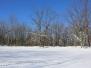 Green Ridge snowstorm woods hike January 24 2016