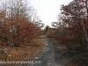 McAdoo-Tresckow  hike McAdoo   (12 of 59)