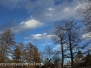 Spring sky March 30 2015