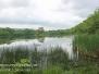 Nescopeck State park June 4 2016