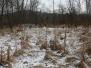 PPL Wetlands hike December 11 2016