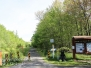 Rails to trails pitch pine barrens May 28 2017
