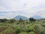 Rwanda Volcano National Park October 13 2016