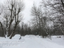 Snowstorm Tuesday evening walk March 14 2017