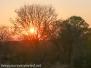 Zimbabwe sunset October 16 2016